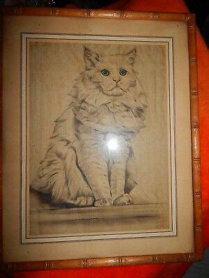 Antique Cat sketch 1920'S  or earlier