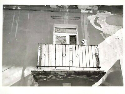 """Authentic Silver Gelatin analogue photo print  """"Dog on a balcony"""""""