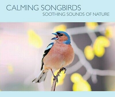 Calming Songbirds - Bird Sound For Meditation, Relaxation, Soothing Atmosphere