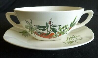 Rare MIDWINTER Cream Soup & Stand PLANT LIFE by Terence Conran 1956