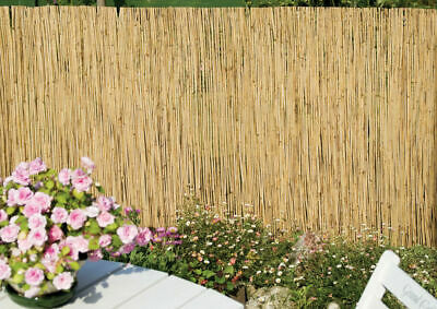 Natural Peeled Reed Fence Screening Roll Garden Screen Fencing Panel Wooden 4m
