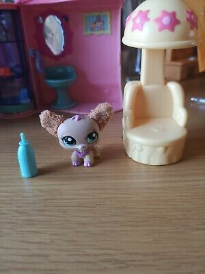 Lps House And Pets With Acsessorys Rare Salon