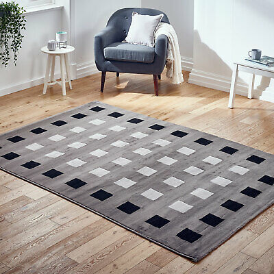 Modern Budget Small Extra Large Runner Grey Boxes Cheap Alpha Rug Ebay Online