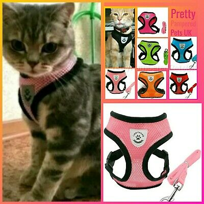 Cat Harness and Leash Lead Starter Set Harness Coat Small Pets Light Pink