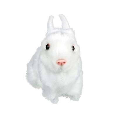 Animals Handicraft Simulation Rabbit Model Teaching Prop Figurines Toys