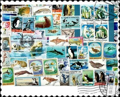 Polar Animals : 50 Different Stamps Collection