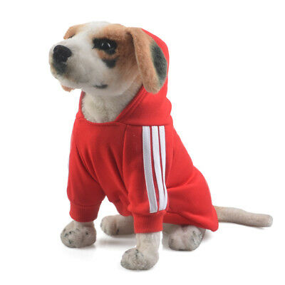 Cool Spring Fall Casual Adidog Pets Dog Clothes Warm Hoodie Coat Jacket Red XS