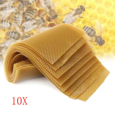 30Pcs Beekeeping Honeycomb Foundation Wax Frames Honey Hive Equipment Tool Set