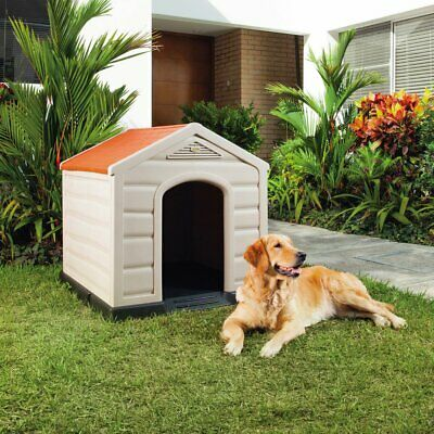 Rimax Resin Multicolor Dog House