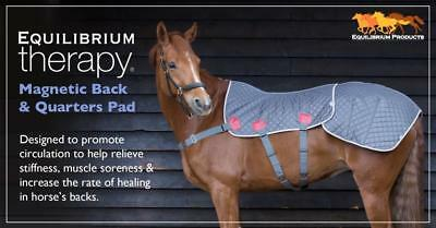 New  Equilibrium Magnetic Therapy Back & Quarters Pad Next Day Delivery