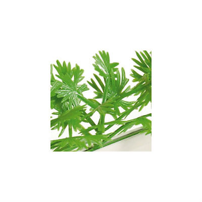 Parsley Garnish Divider By Dalebrook - (12 Pack)