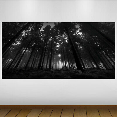 TREE WITHOUT LEAVES Vinyl wall art sticker EXTRA LARGE SIZE 118CM X97CM