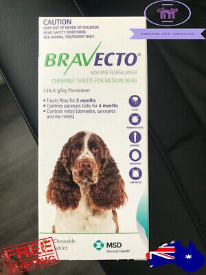 Brand New Bravecto For Medium Dogs 10 to 20 Kg Green 1 Chew Long Expiry Date