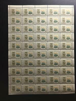 MNH OG SC#429 5c Mountain Avens - pane of 50