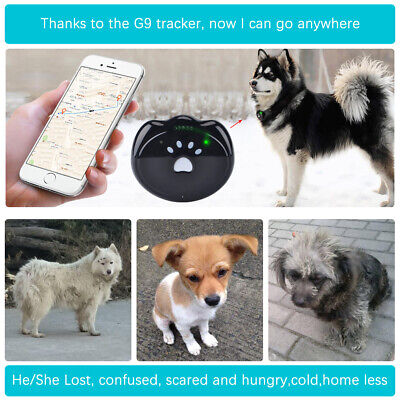 Mini GPS Pet Tracker Collar For Dogs Cats Real Time Tracking Device GSM GPRS 2G