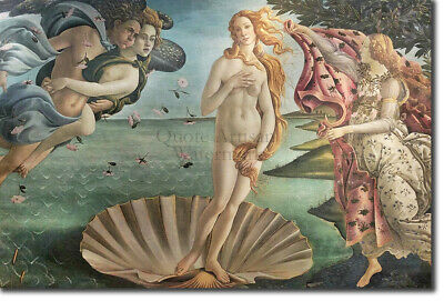 Sandro Botticelli - The Birth of Venus (1484) - Painting Photo Poster Print Art