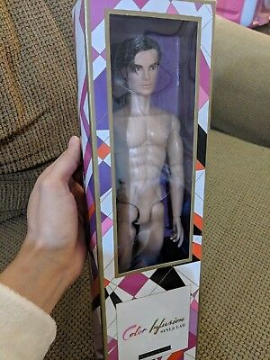 Integrity Toys FR 2015 Convention Callum Windsor Color Infusion Homme Doll