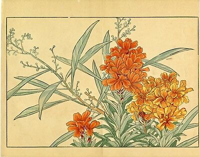 "Rare KONAN Japanese woodblock print: ""WALL FLOWER, 1917"""