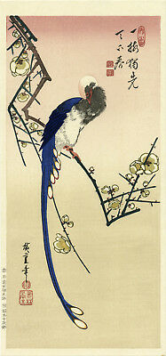 """Marvelous HIROSHIGE woodblock reprint: """"MAGPIE ON A FLOWERING PLUM"""""""