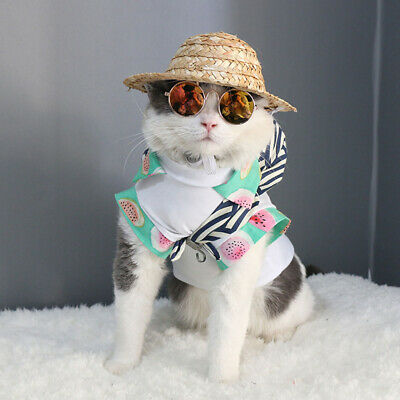 Hot Mexico Style Pet Dog Cat Funny Lovely Straw Hat Sombrero Attractive Hats New