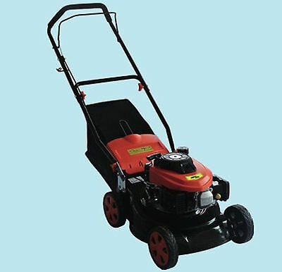 Lawnmower Combustion Green Cat Ringo Hp3, 5 41cm Vacuum Cleaner Steel
