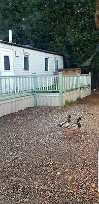 Static caravan holiday home Willerby Rio 3 Bed Lincolnshire sale on or off site