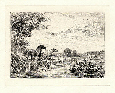 "Stunning VEYRASSAT 1800s Original Etching ""Horses by a Stream"" SIGNED Framed COA"