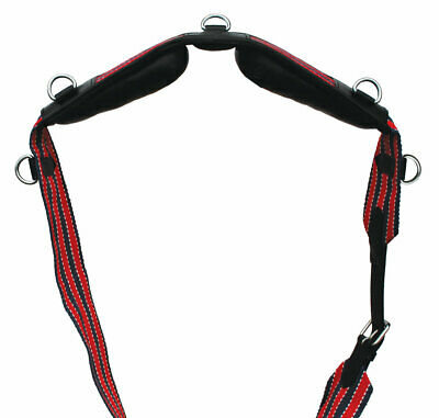 Windsor 3 Inch Webbing Lunging Roller (with D ring attachments)