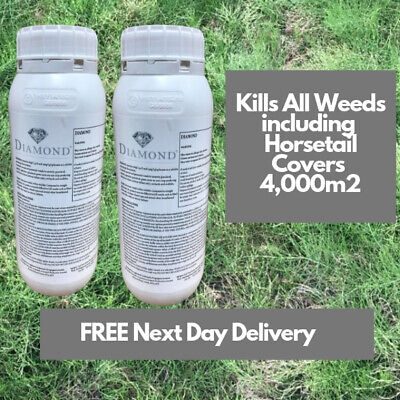Kill Horse Mares Tail Diamond Weedkiller 2X1L Replaces Pearl