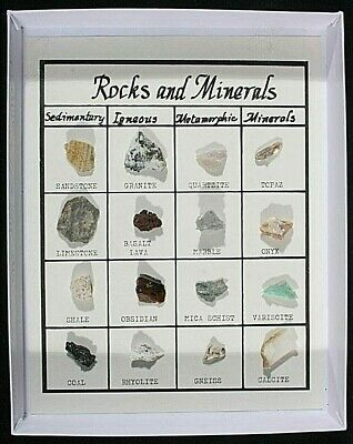 16 Rock And Mineral Specimens In A Nice Display Box All Were Collected In Utah!