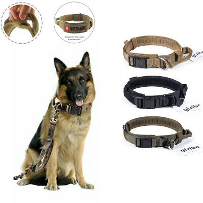 Heavy Duty Tactical Military Adjustable Traning Dog Collar Nylon w/Metal Buckle