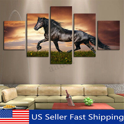 Modern Art Oil Colourful Horse Painting Canvas Print Wall Art Picture Home  US