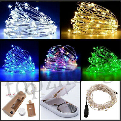 20 100 LED Battery Fairy String Lights Copper Bottle Micro Rice Wire  Party Xmas
