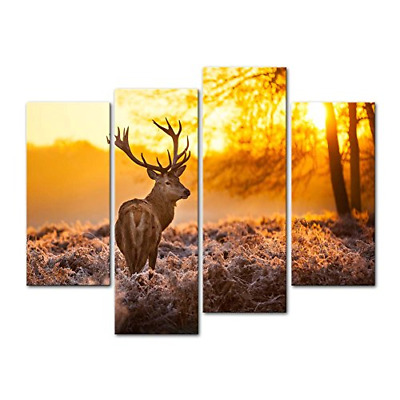 Canvas Print Wall Art Picture Deer In Autumn Forest In Sunset Animal Wildlife 4