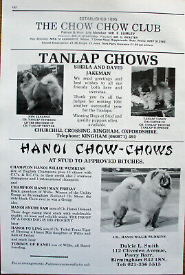 CHOW CHOW DOG KENNEL CLIPPINGS all from 1980s - 2000s x 30