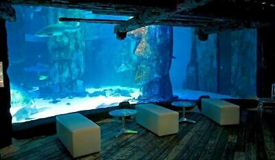 2 Tickets to Sea Life Lates in London Friday 24th May 2019 at 7.30pm sealife