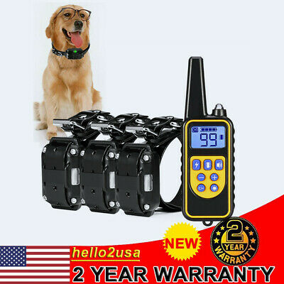 With Remote 800m Dog Shock Collar IP6 Waterproof Electric for Large Pet Training