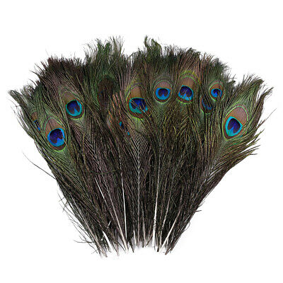 """Set Of 50* Natural Peacock Eye Feathers Floral Decorations 31-33/""""//79-84 cm Long"""