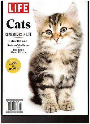 Time Life Cats Companions In Life 2019 Retail 13.99