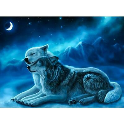 5D DIY Full Drill Diamond Painting 2 Wolves Cross Stitch Embroidery Crafts