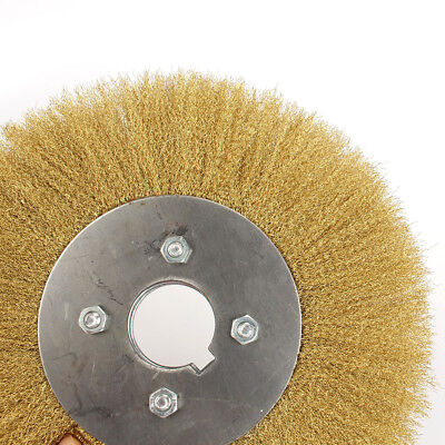 10inch 32mm Bore Copper Wire Wheel Crimped Brass Flat Brush Derusting Polishing