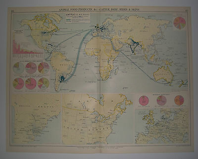 The World's Commodities CATTLE, BEEF, HIDES and SKINS Vintage 1928 Map