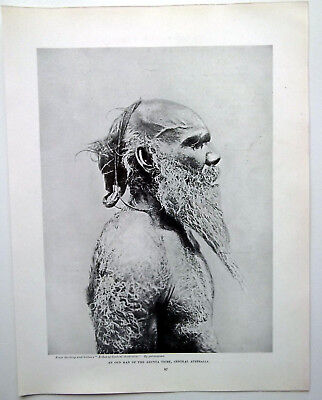 An Old Man Of The Arunta Tribe Central Australia Antique Print