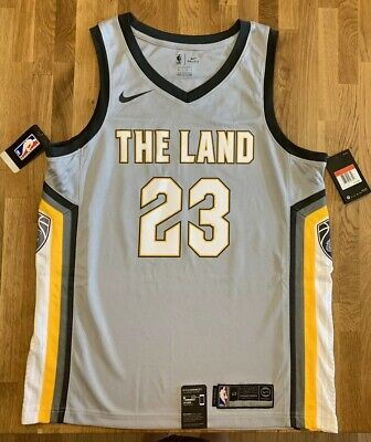 b3866ffe Nike Lebron James Jersey Cleveland Cavaliers The Land Size Adult L 48 Cavs  NWT