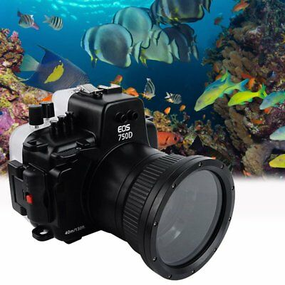Seafrog 40m/130ft Underwater Diving Camera Housing Case for Canon 750D 18-55mm