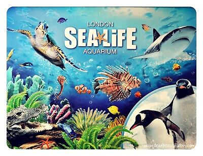 SEA LIFE Centre London Tickets | Any Date August To December | E Ticket