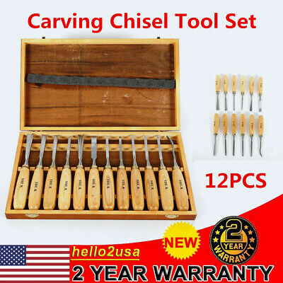 12x Wood Carving Hand Chisel Tool Set Durable Woodworking Gouges Steel Kit