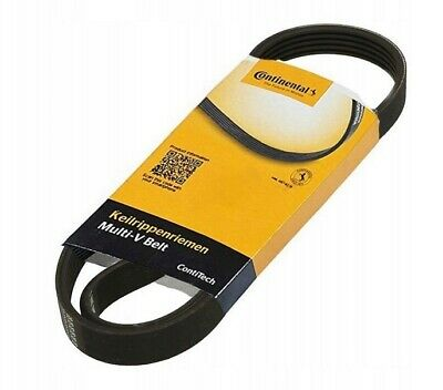 Contitech V-Ribbed Belt 6PK800 CITROEN