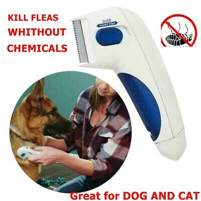 Electronic Electric Pet Cat Dog Safe Flea Zapper Comb Kills Fleas Best