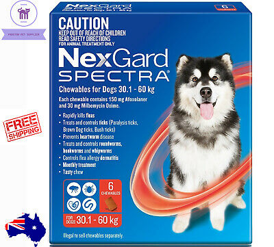 Brand New Nexgard Spectra Red For Very Large Dogs 30.1-60kg 6 Pack  Free Postage